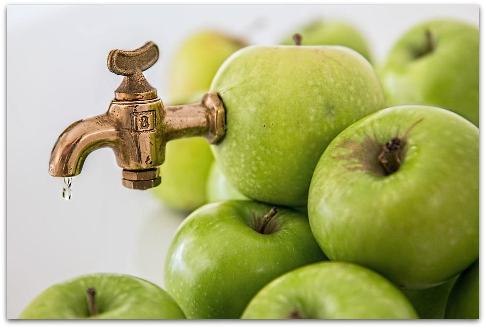 Avec votre extracteur de jus, buvez des jus de fruit bien frais !